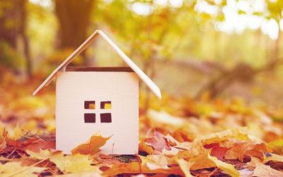 Home Renovations Kelowna: Why Fall is a Good Time to Renovate
